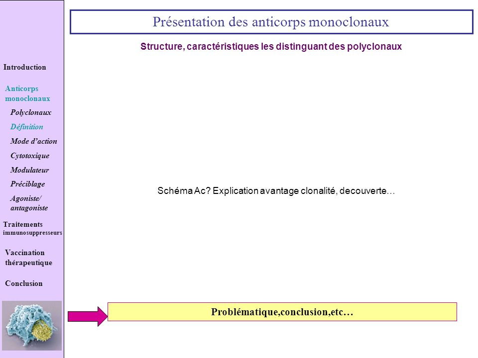 Structure, caractéristiques les distinguant des polyclonaux