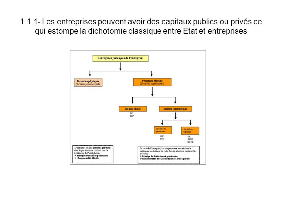 1.1.1- Les entreprises peuvent avoir des capitaux publics ou privés ce qui estompe la dichotomie classique entre Etat et entreprises