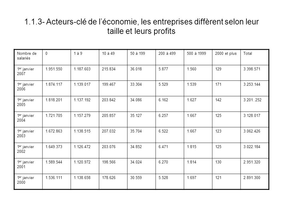1.1.3- Acteurs-clé de l'économie, les entreprises diffèrent selon leur taille et leurs profits