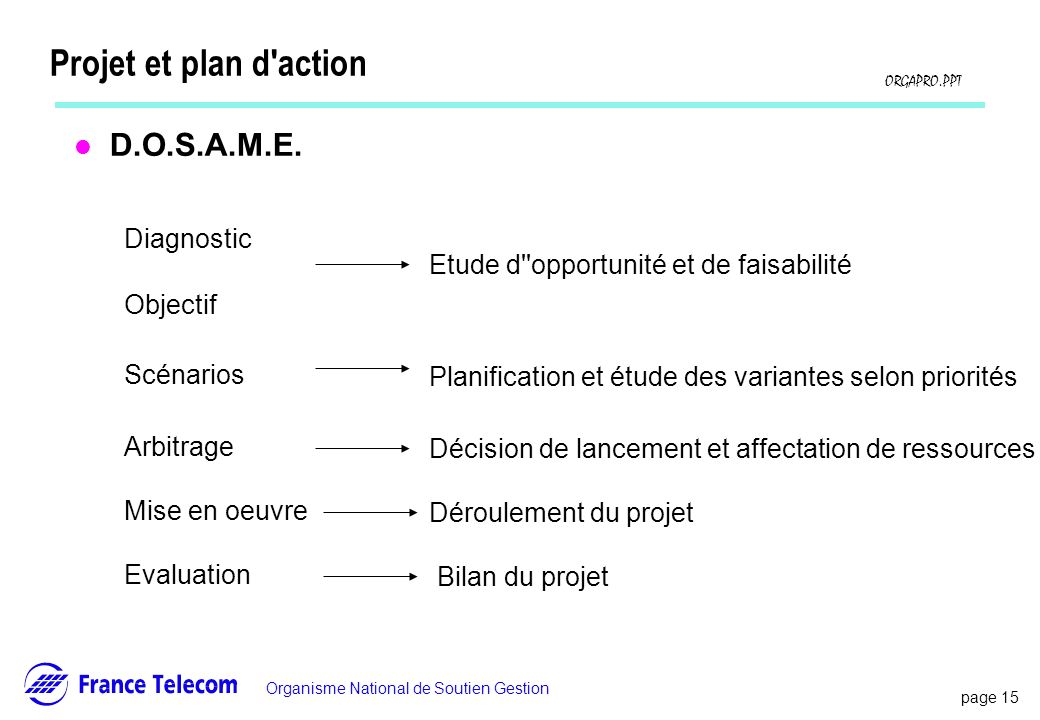 Projet et plan d action D.O.S.A.M.E. Diagnostic