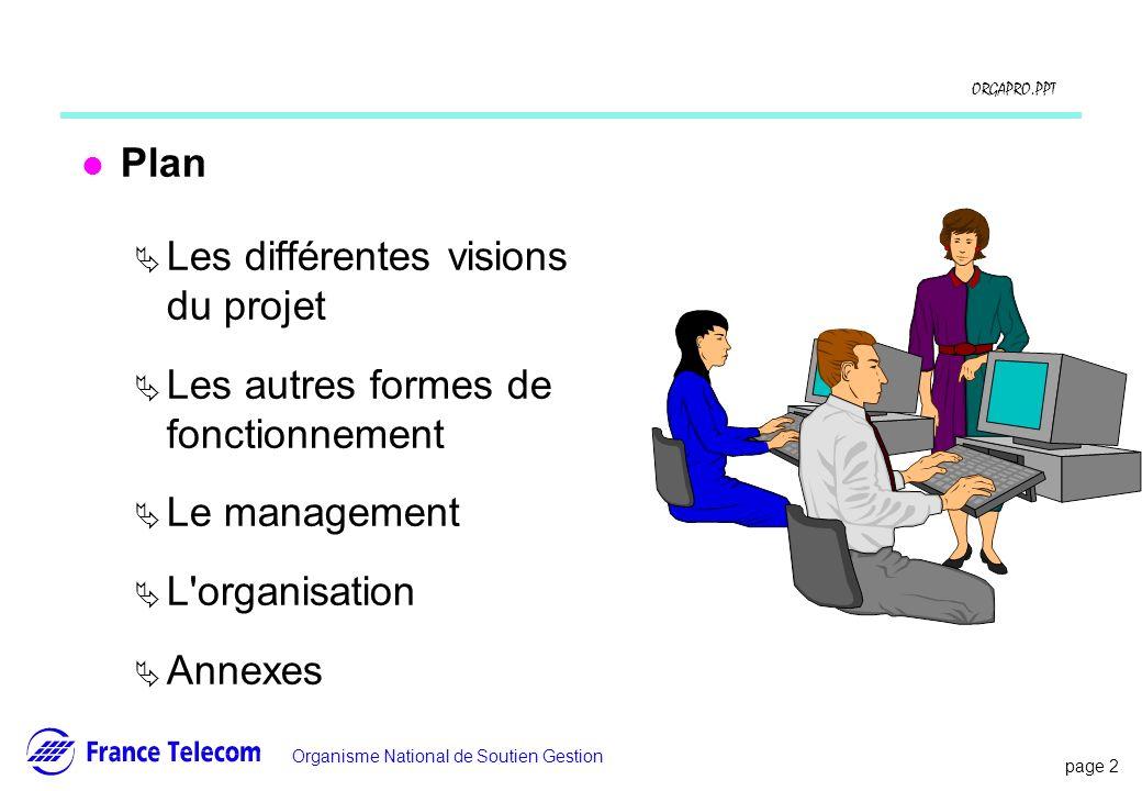 Plan Les différentes visions du projet. Les autres formes de fonctionnement. Le management. L organisation.