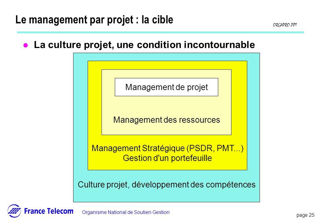 Le management par projet : la cible