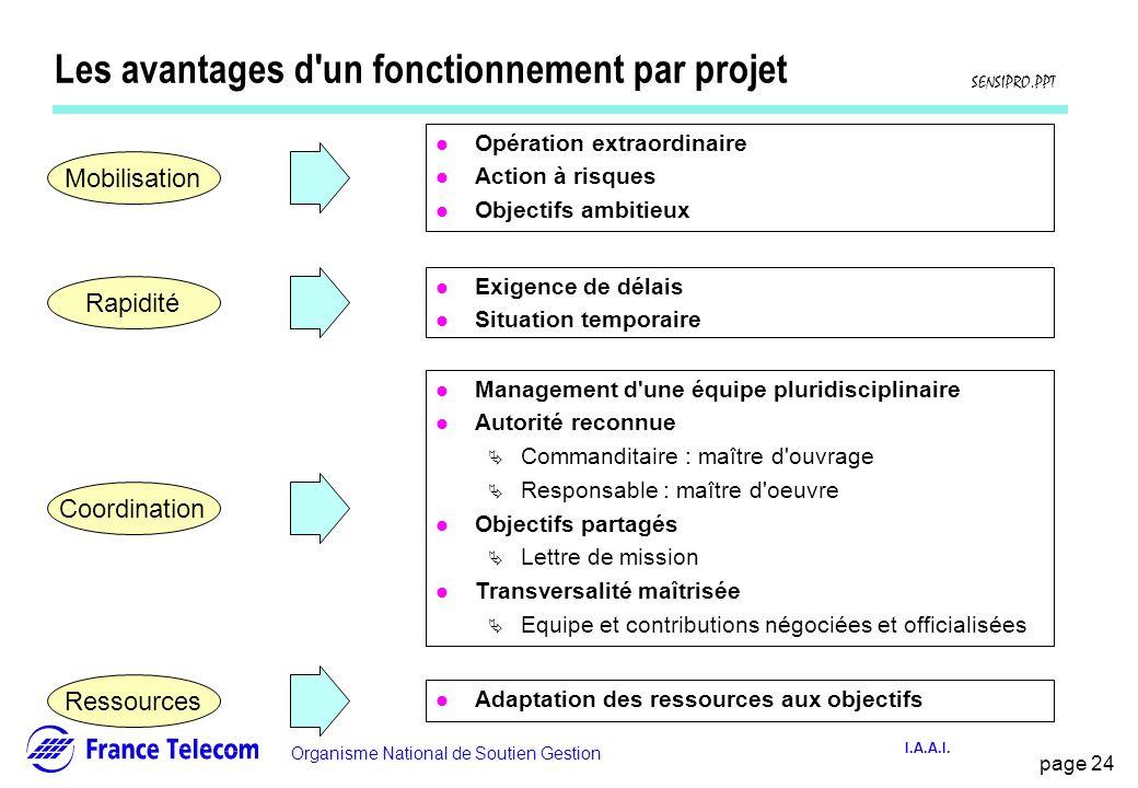 Les avantages d un fonctionnement par projet