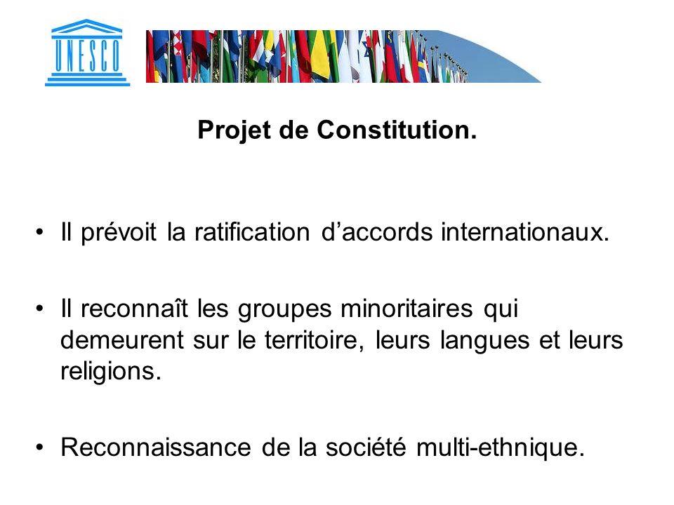 Projet de Constitution.
