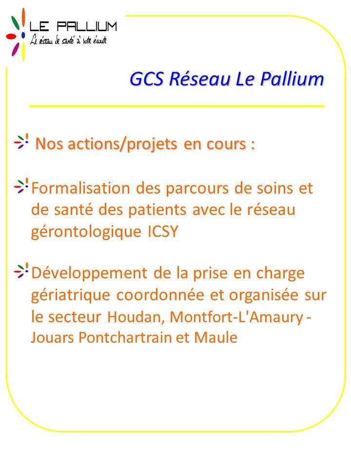 GCS Réseau Le Pallium Nos actions/projets en cours :