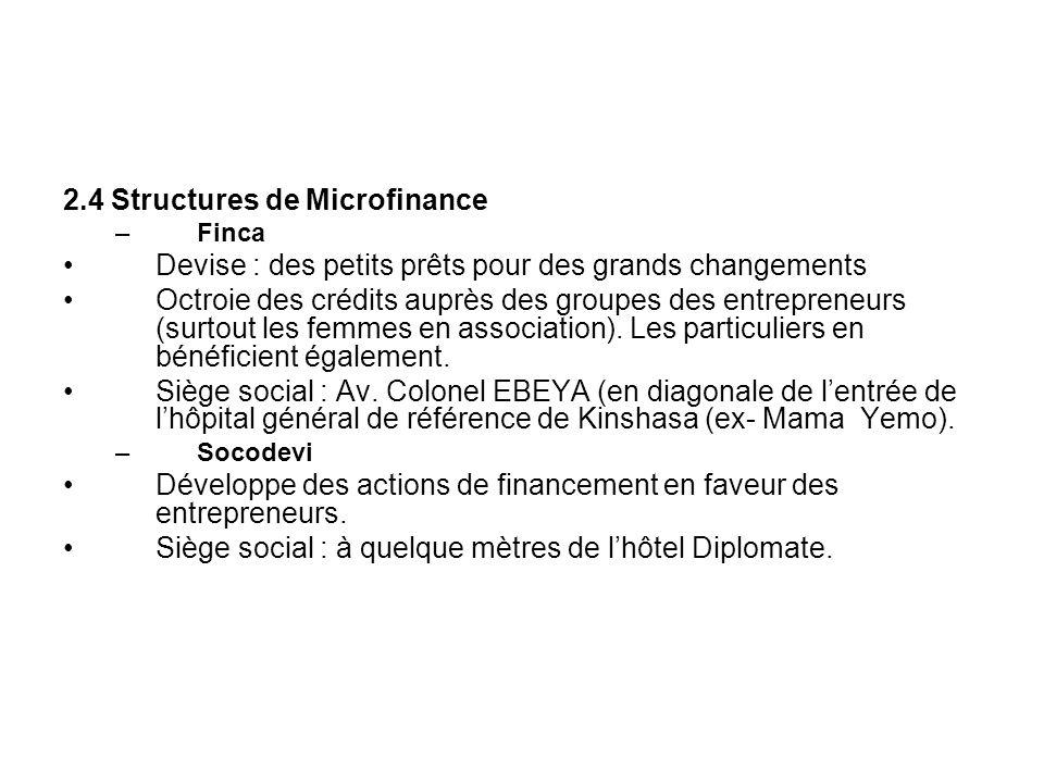 2.4 Structures de Microfinance