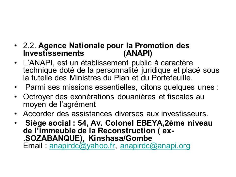 2.2. Agence Nationale pour la Promotion des Investissements (ANAPI)