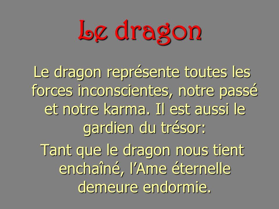 Le dragon Le dragon représente toutes les forces inconscientes, notre passé et notre karma. Il est aussi le gardien du trésor:
