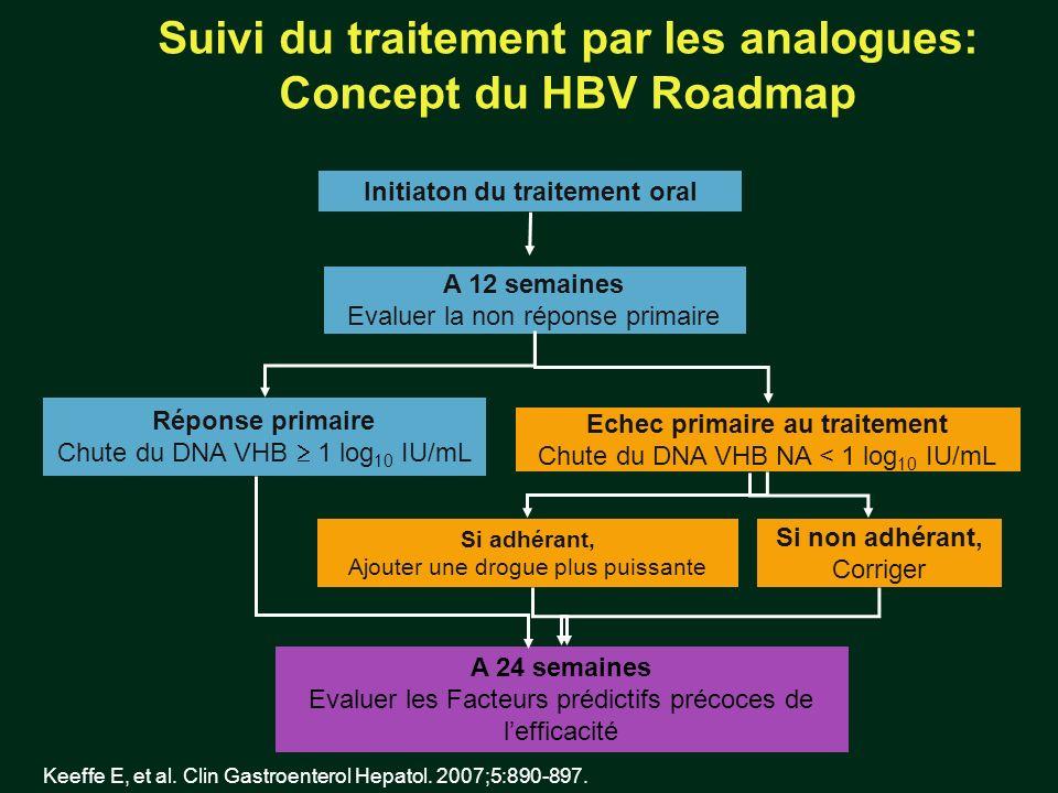 Suivi du traitement par les analogues: Concept du HBV Roadmap