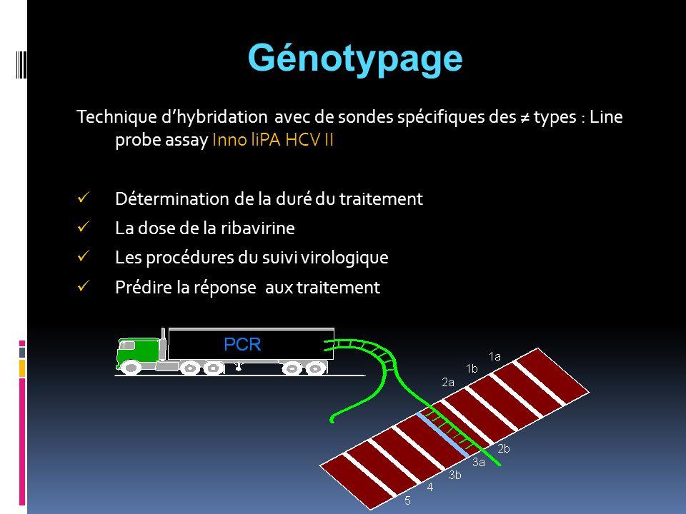 Génotypage Technique d'hybridation avec de sondes spécifiques des ≠ types : Line probe assay Inno liPA HCV II.