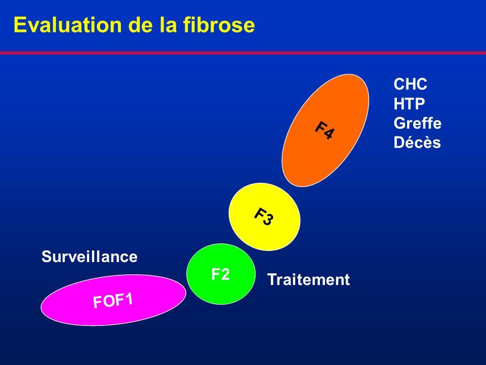 Evaluation de la fibrose