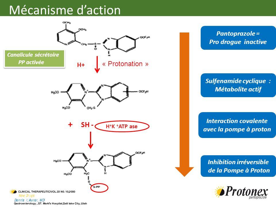 Mécanisme d'action + SH - Pantoprazole = Pro drogue inactive