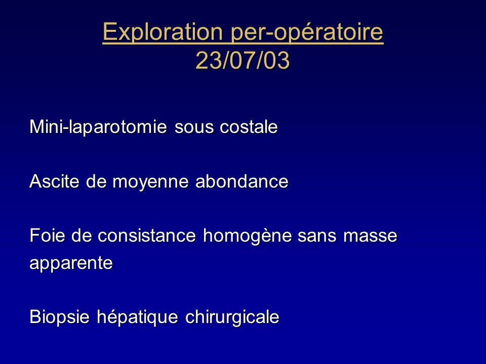 Exploration per-opératoire 23/07/03