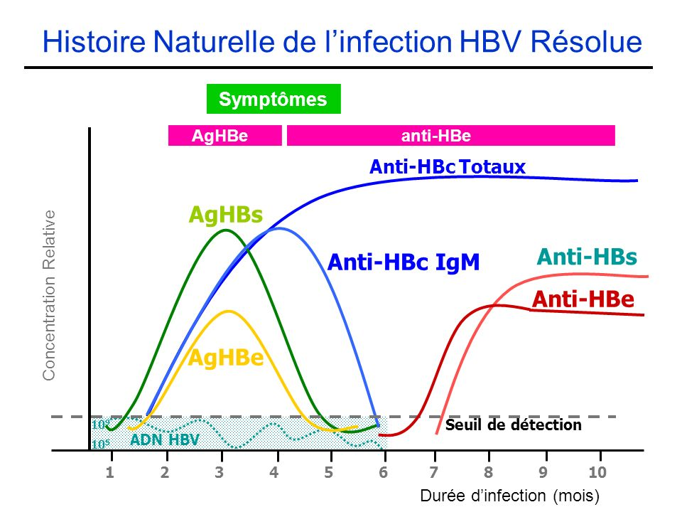 Histoire Naturelle de l'infection HBV Résolue