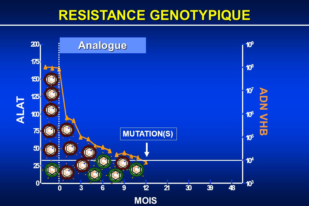 RESISTANCE GENOTYPIQUE