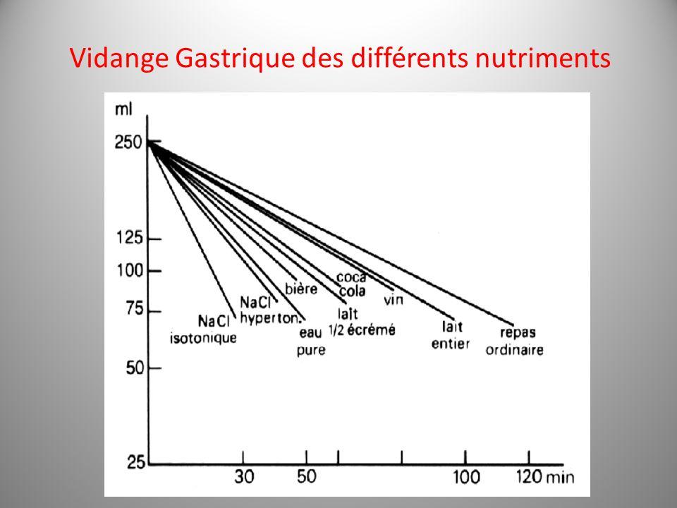 Vidange Gastrique des différents nutriments