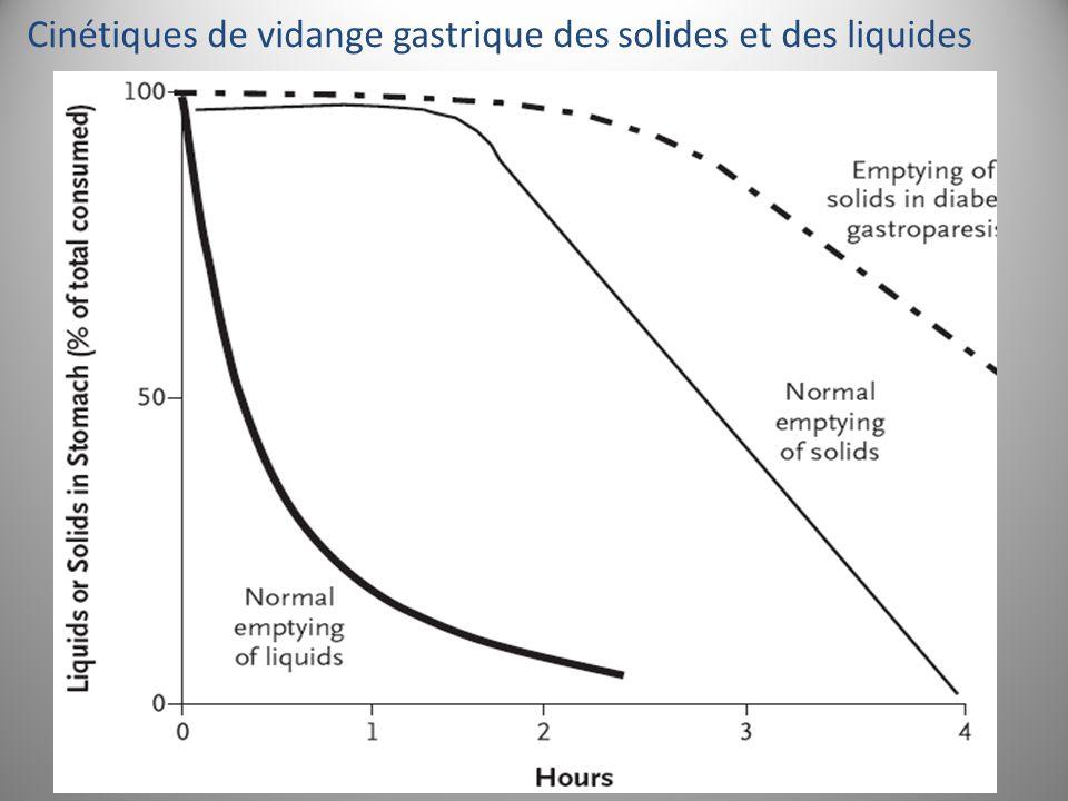 Cinétiques de vidange gastrique des solides et des liquides