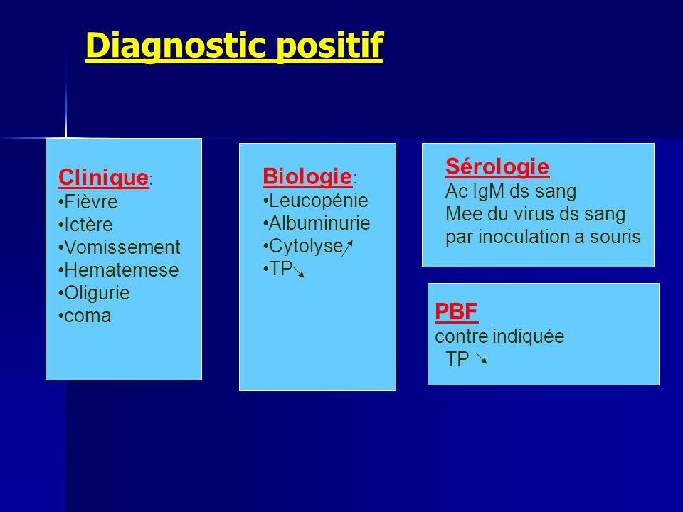 Diagnostic positif Biologie: Sérologie Clinique: PBF Leucopénie