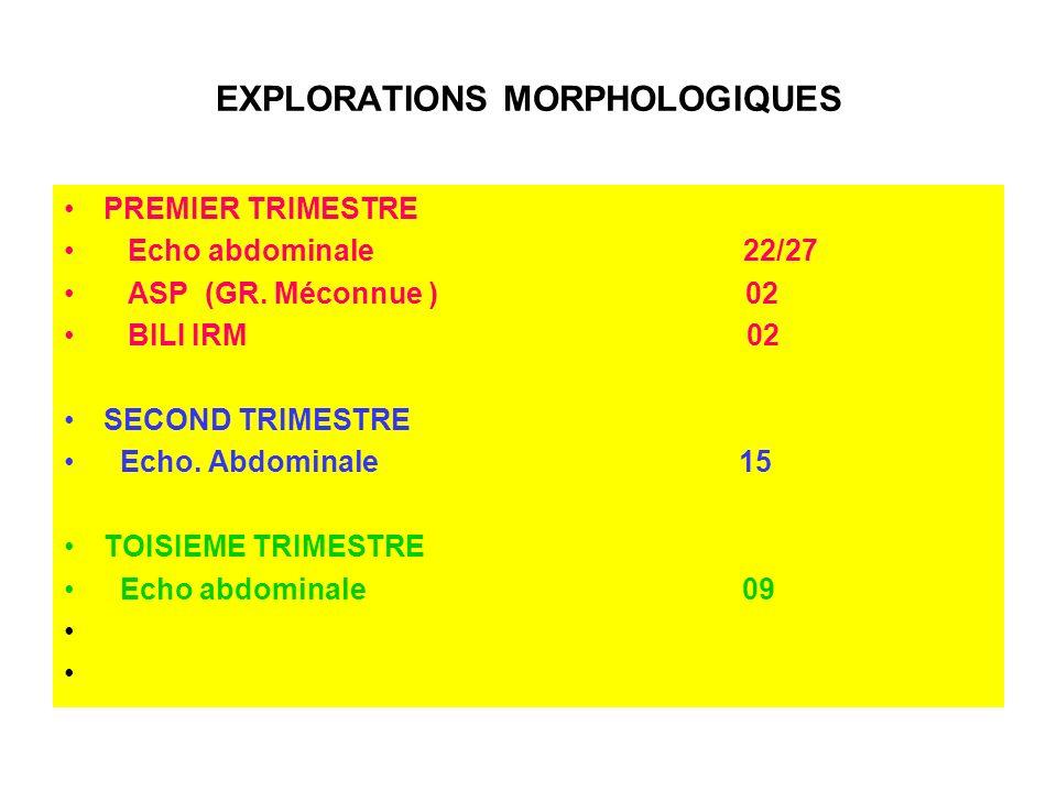 EXPLORATIONS MORPHOLOGIQUES