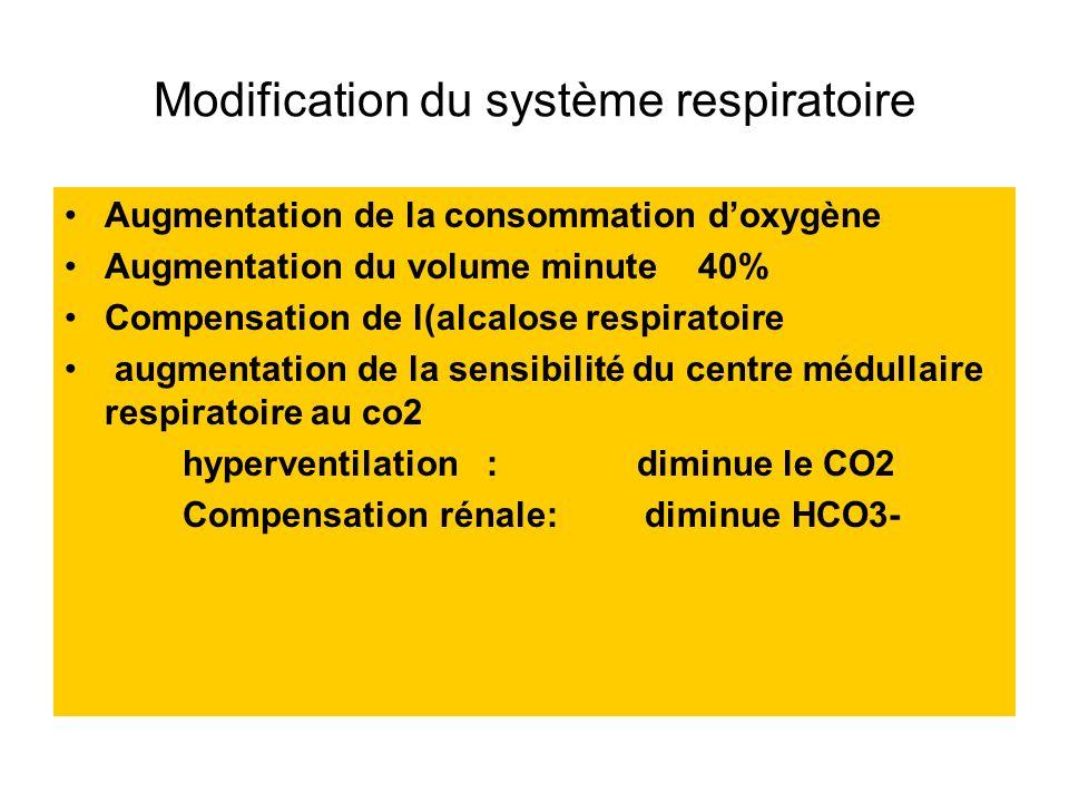 Modification du système respiratoire