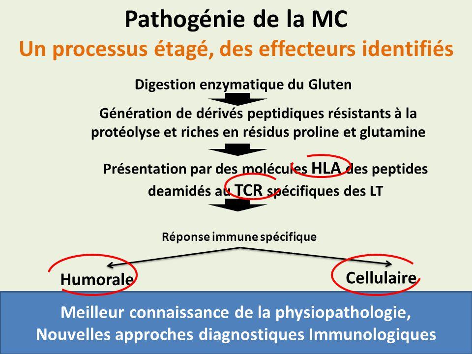 Pathogénie de la MC Un processus étagé, des effecteurs identifiés