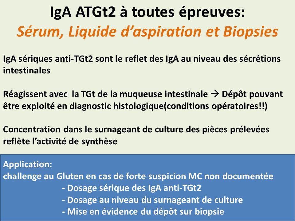 IgA ATGt2 à toutes épreuves: Sérum, Liquide d'aspiration et Biopsies