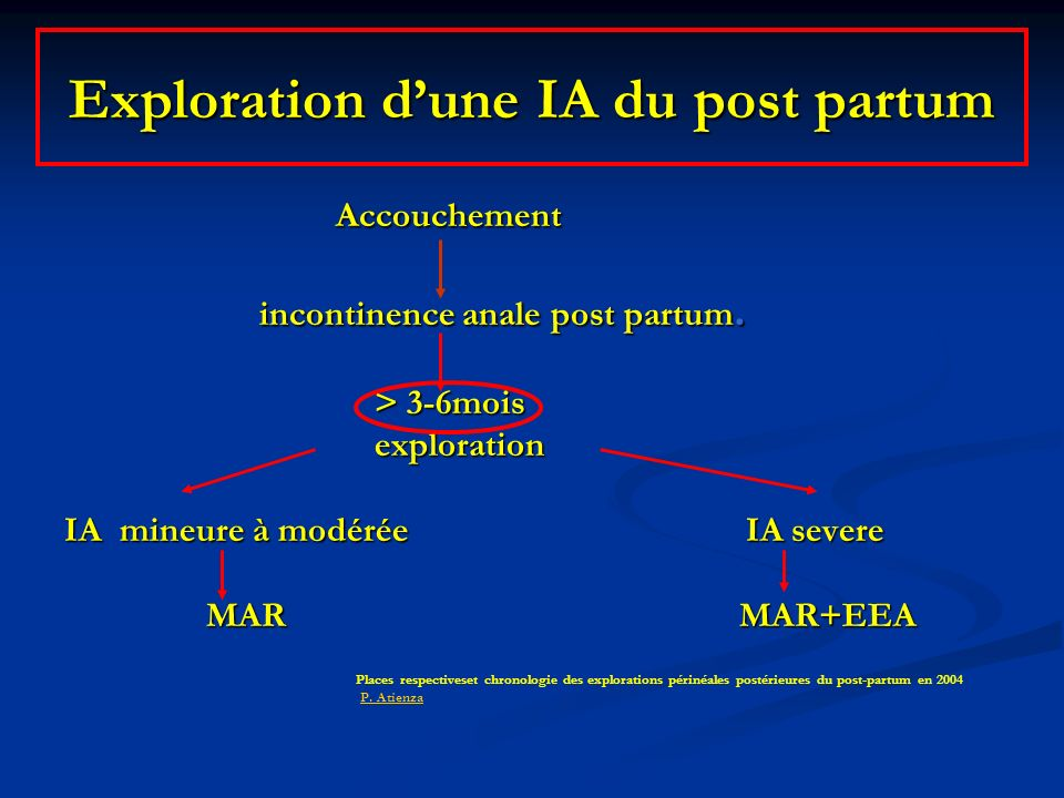Exploration d'une IA du post partum