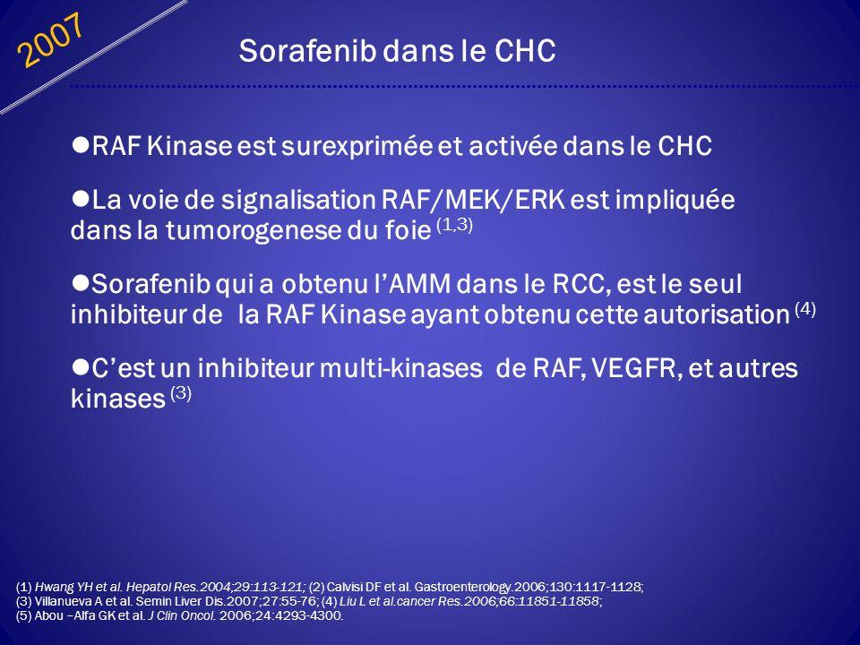 2007 Sorafenib dans le CHC. RAF Kinase est surexprimée et activée dans le CHC.