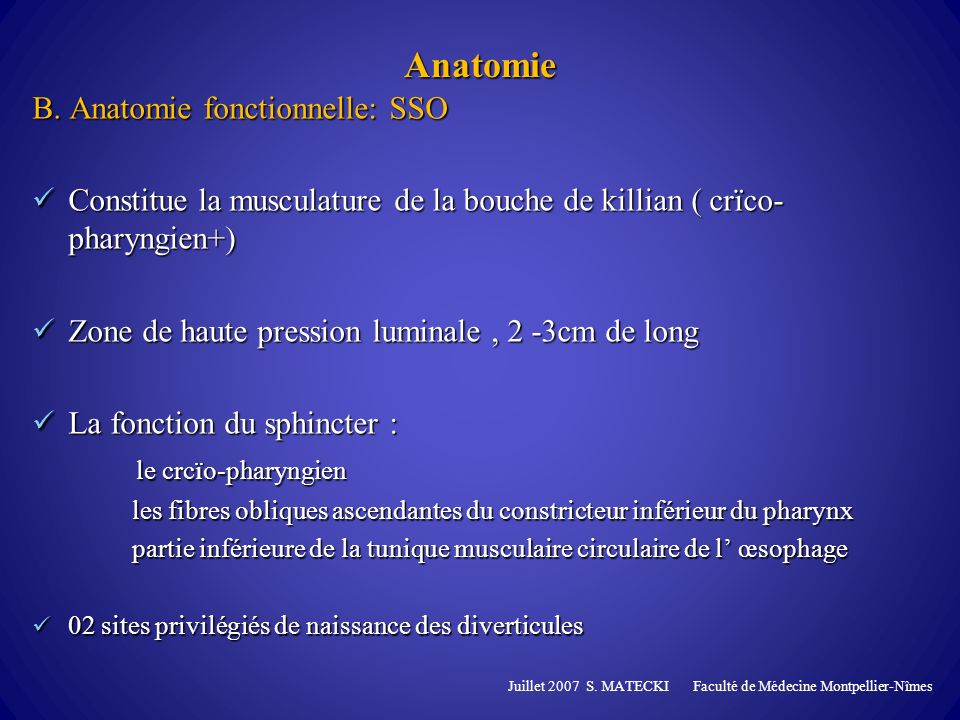 Anatomie B. Anatomie fonctionnelle: SSO