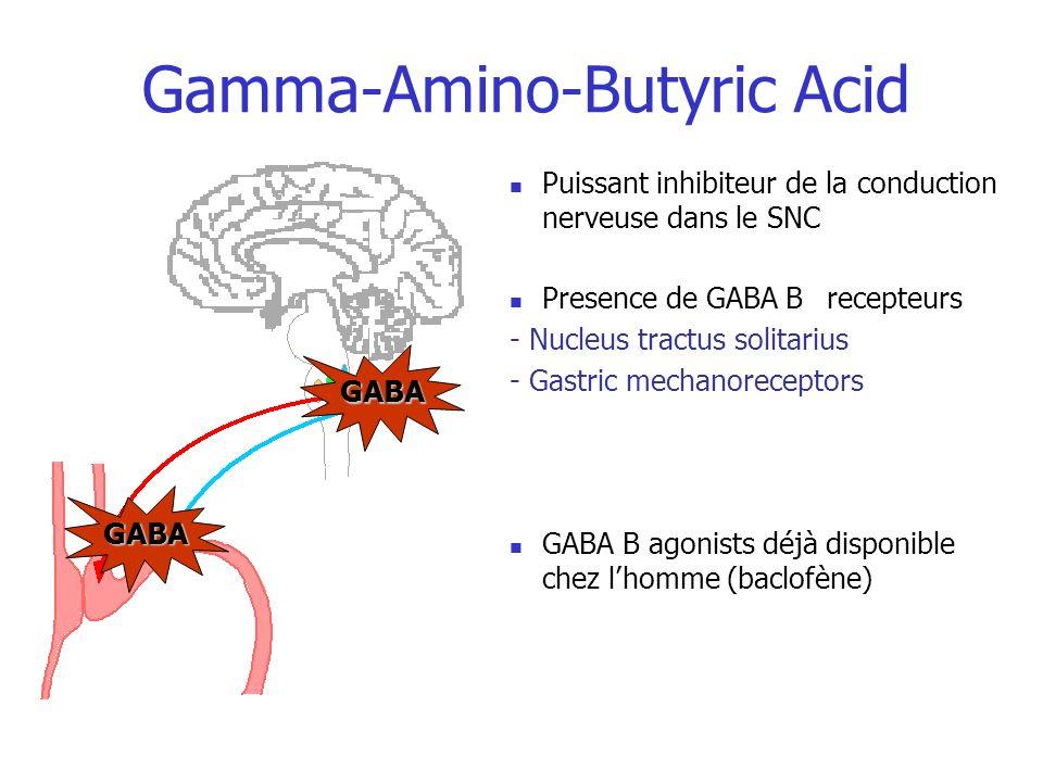 Gamma-Amino-Butyric Acid