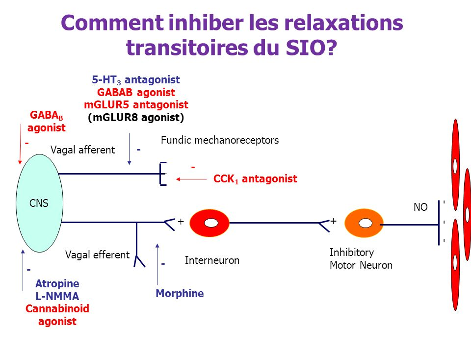 Comment inhiber les relaxations