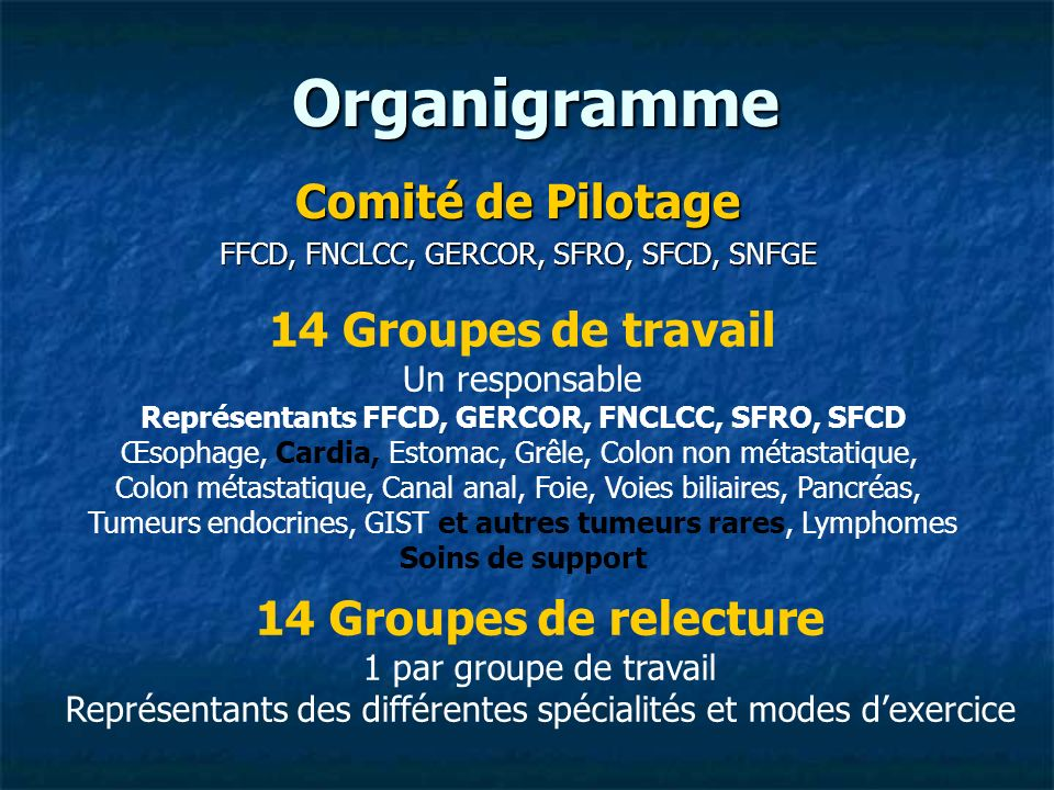 Organigramme Comité de Pilotage 14 Groupes de travail