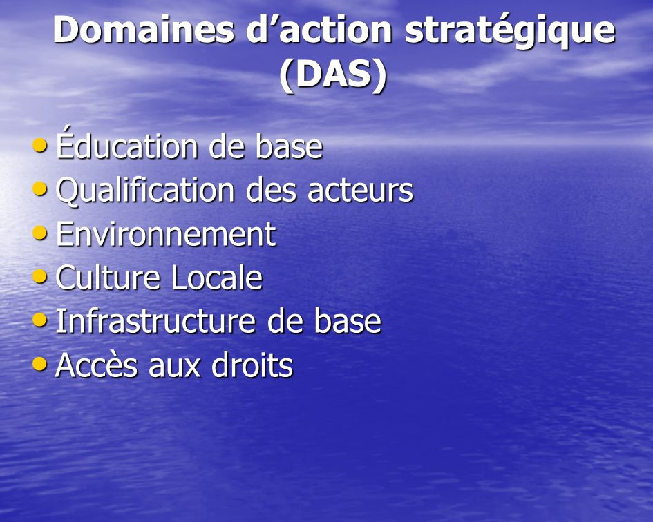 Domaines d'action stratégique (DAS)