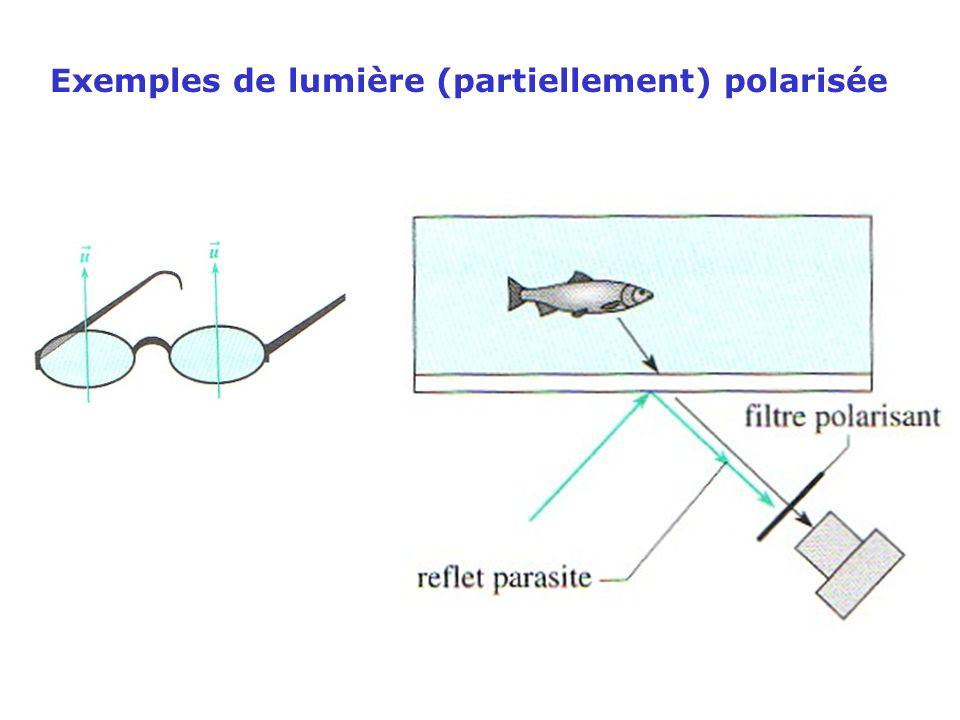 Exemples de lumière (partiellement) polarisée