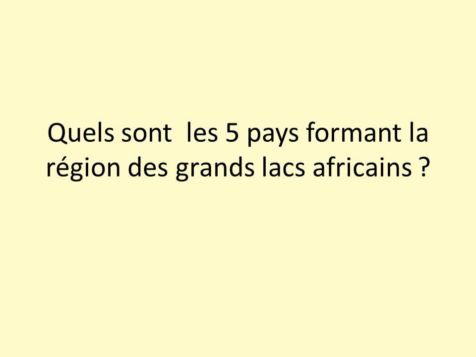 Quels sont les 5 pays formant la région des grands lacs africains