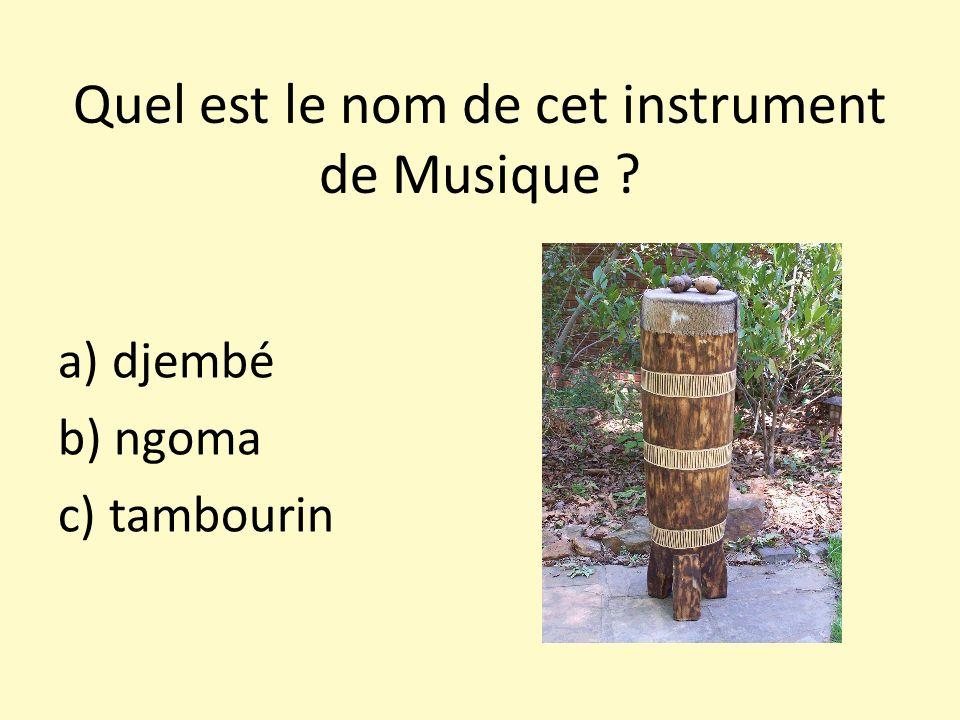 Quel est le nom de cet instrument de Musique