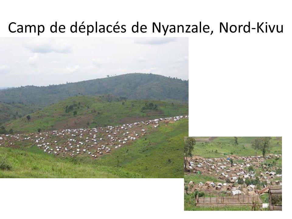 Camp de déplacés de Nyanzale, Nord-Kivu