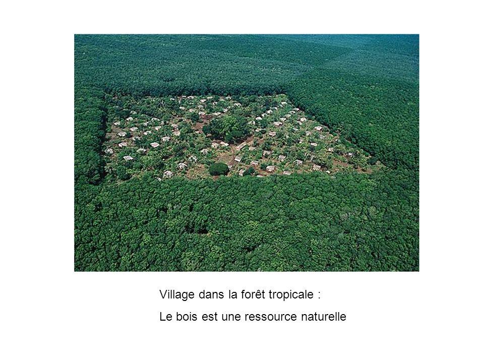 Village dans la forêt tropicale :