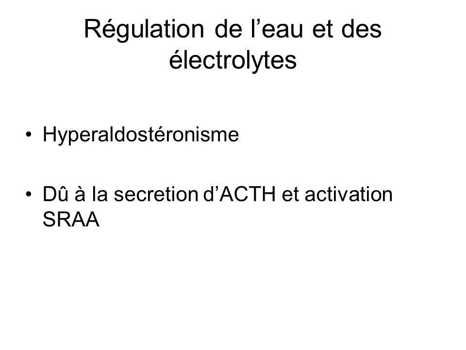 Régulation de l'eau et des électrolytes