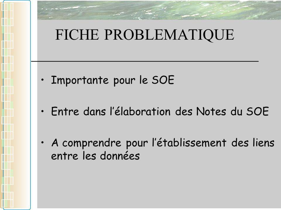 FICHE PROBLEMATIQUE _____________________________