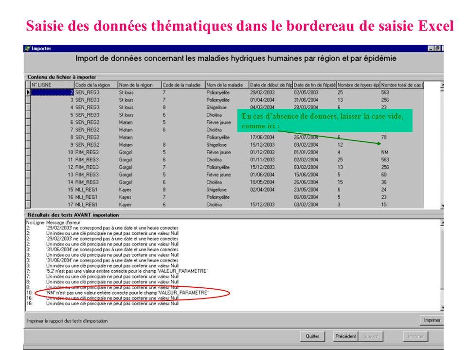 Saisie des données thématiques dans le bordereau de saisie Excel