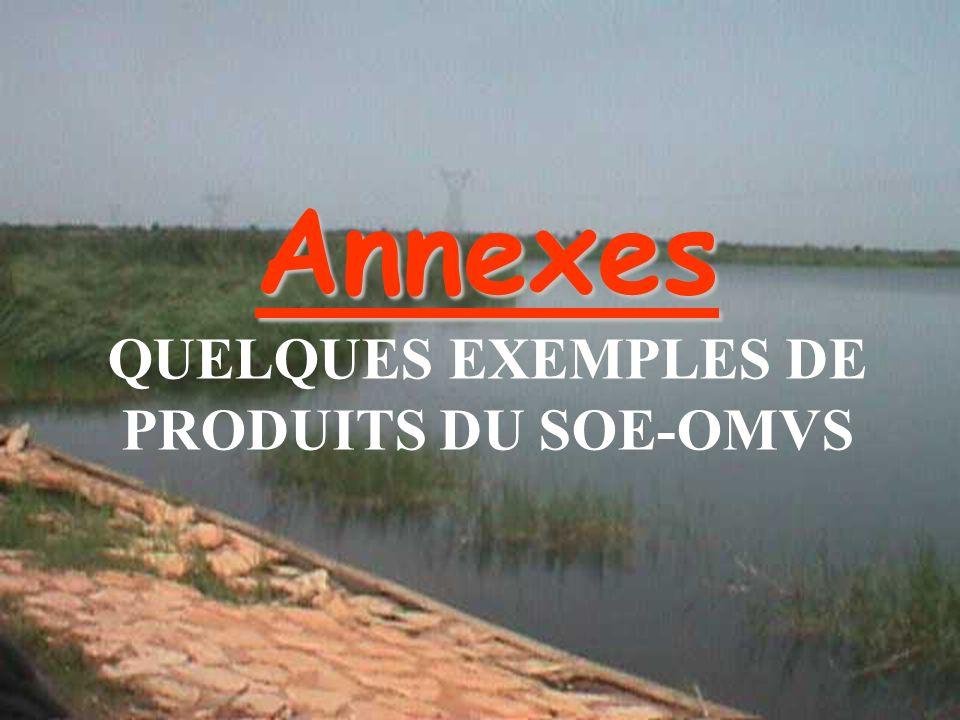 Annexes QUELQUES EXEMPLES DE PRODUITS DU SOE-OMVS