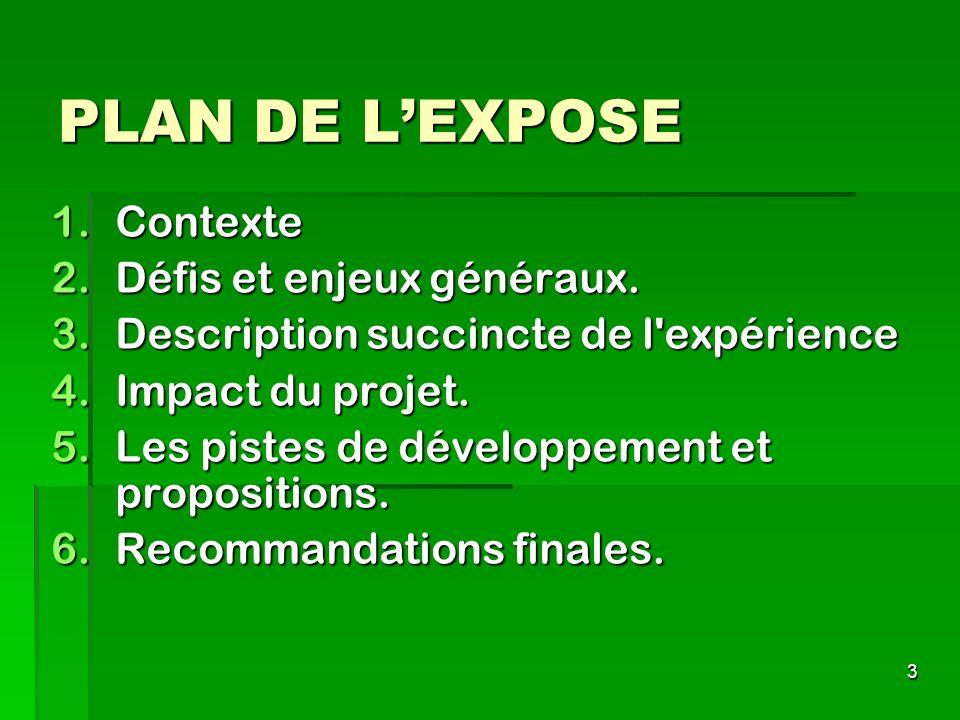 PLAN DE L'EXPOSE Contexte Défis et enjeux généraux.