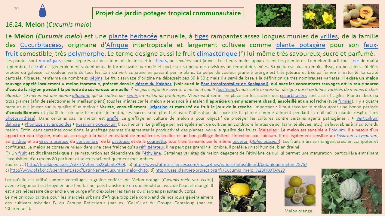 Projet de jardins potagers tropicaux communautaire et - Le fumier de cheval est il bon pour le jardin ...