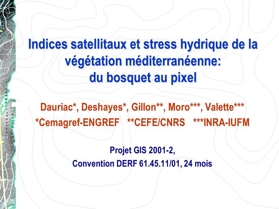 Indices satellitaux et stress hydrique de la végétation méditerranéenne: du bosquet au pixel