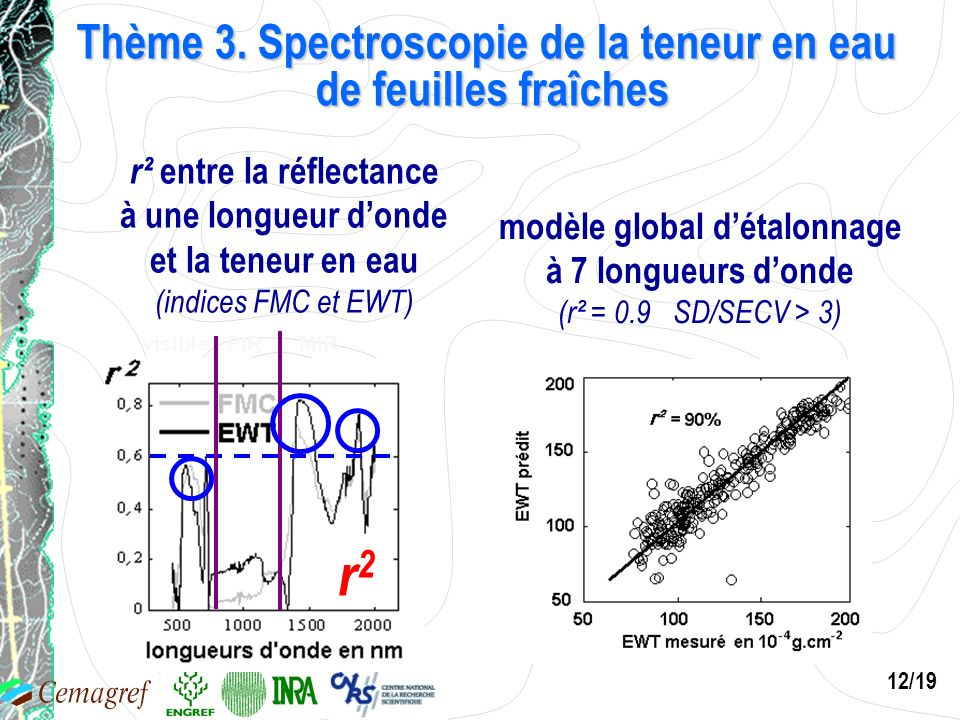 Thème 3. Spectroscopie de la teneur en eau de feuilles fraîches