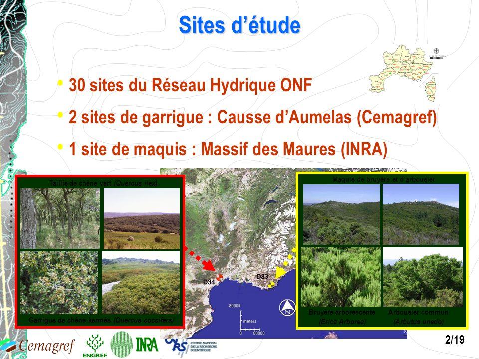 Arbousier commun (Arbutus unedo) Bruyère arborescente (Erica Arborea)