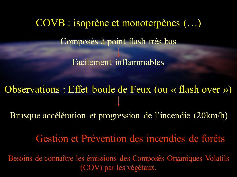 COVB : isoprène et monoterpènes (…)