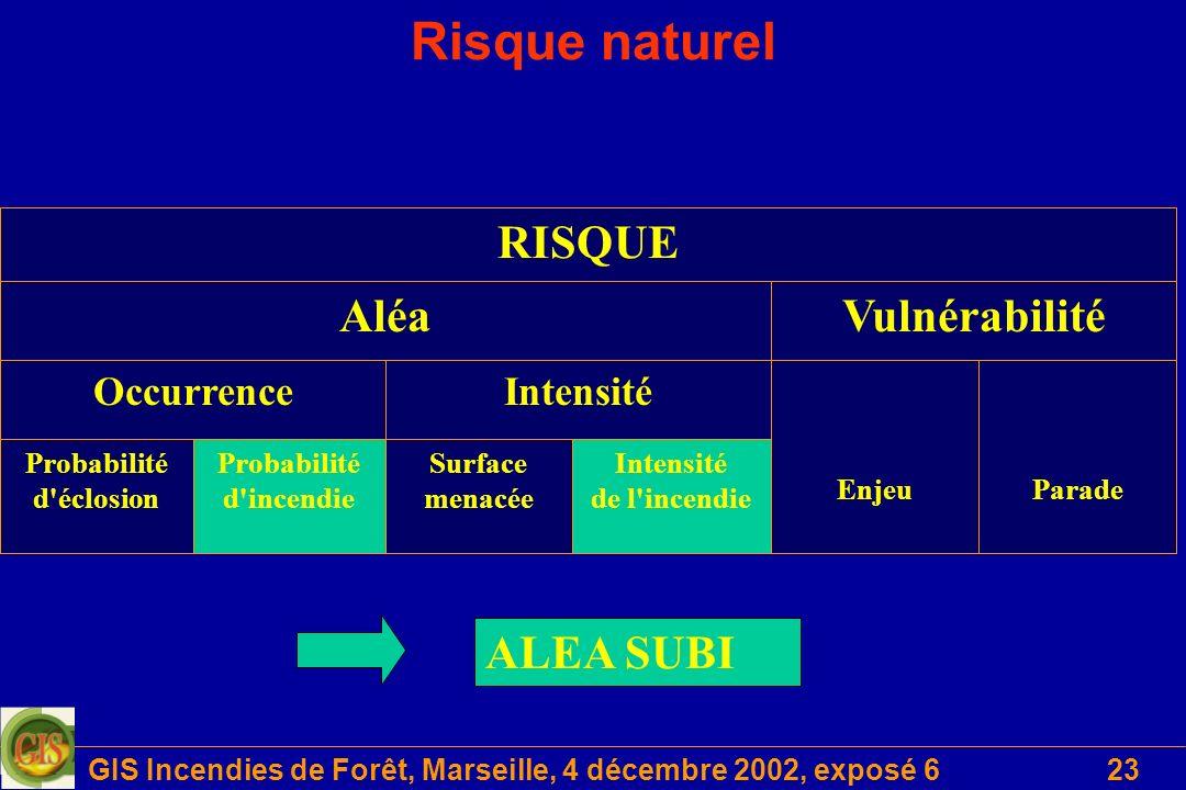 GIS Incendies de Forêt, Marseille, 4 décembre 2002, exposé 6