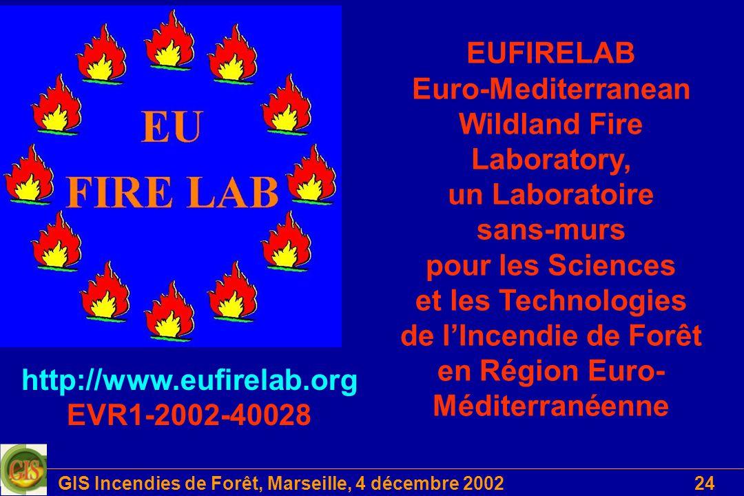 http://www.eufirelab.org EVR1-2002-40028